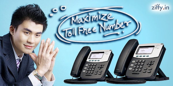 Maximize-Toll-Free-No