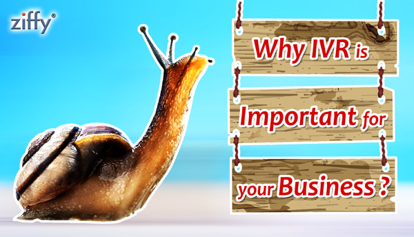 Reasons why IVR is important for your business